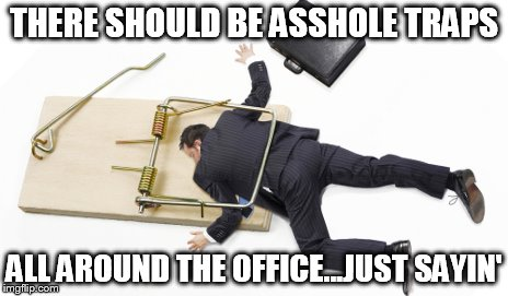 The Joy of Working With Others |  THERE SHOULD BE ASSHOLE TRAPS; ALL AROUND THE OFFICE...JUST SAYIN' | image tagged in caught in a trap,asshole,office,work,if only | made w/ Imgflip meme maker