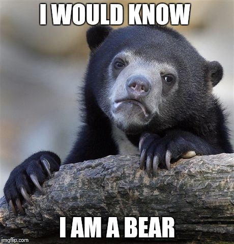 Confession Bear Meme | I WOULD KNOW I AM A BEAR | image tagged in memes,confession bear | made w/ Imgflip meme maker