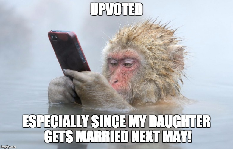 monkey in a hot tub with iphone | UPVOTED ESPECIALLY SINCE MY DAUGHTER GETS MARRIED NEXT MAY! | image tagged in monkey in a hot tub with iphone | made w/ Imgflip meme maker