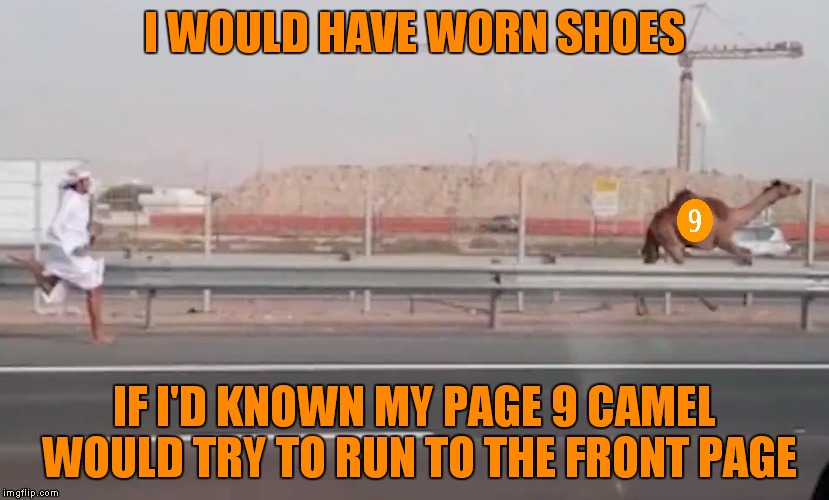 Be prepared to see page 9 memes running up front this week! | I WOULD HAVE WORN SHOES IF I'D KNOWN MY PAGE 9 CAMEL WOULD TRY TO RUN TO THE FRONT PAGE | image tagged in should have known,camel,running,page 9 party | made w/ Imgflip meme maker