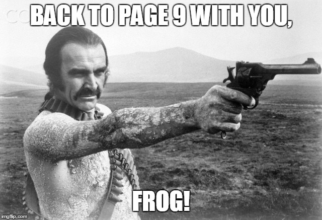 BACK TO PAGE 9 WITH YOU, FROG! | made w/ Imgflip meme maker