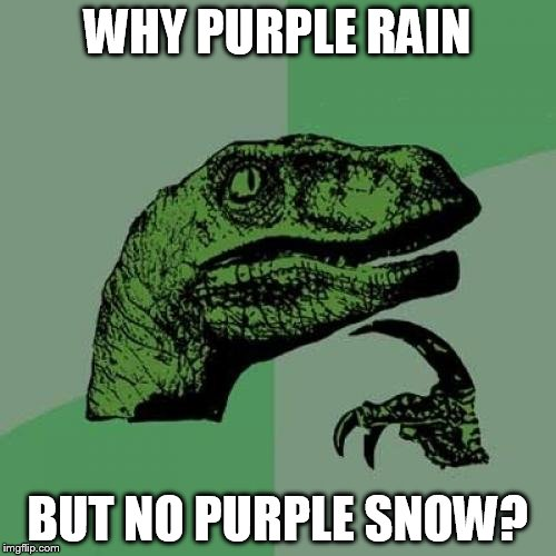 Philosoraptor Meme | WHY PURPLE RAIN BUT NO PURPLE SNOW? | image tagged in memes,philosoraptor | made w/ Imgflip meme maker