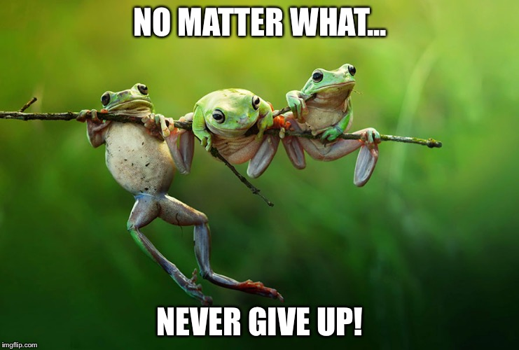 You Life Matters! |  NO MATTER WHAT... NEVER GIVE UP! | image tagged in life,depression,inspiration,hope,depression sadness hurt pain anxiety,anxiety | made w/ Imgflip meme maker