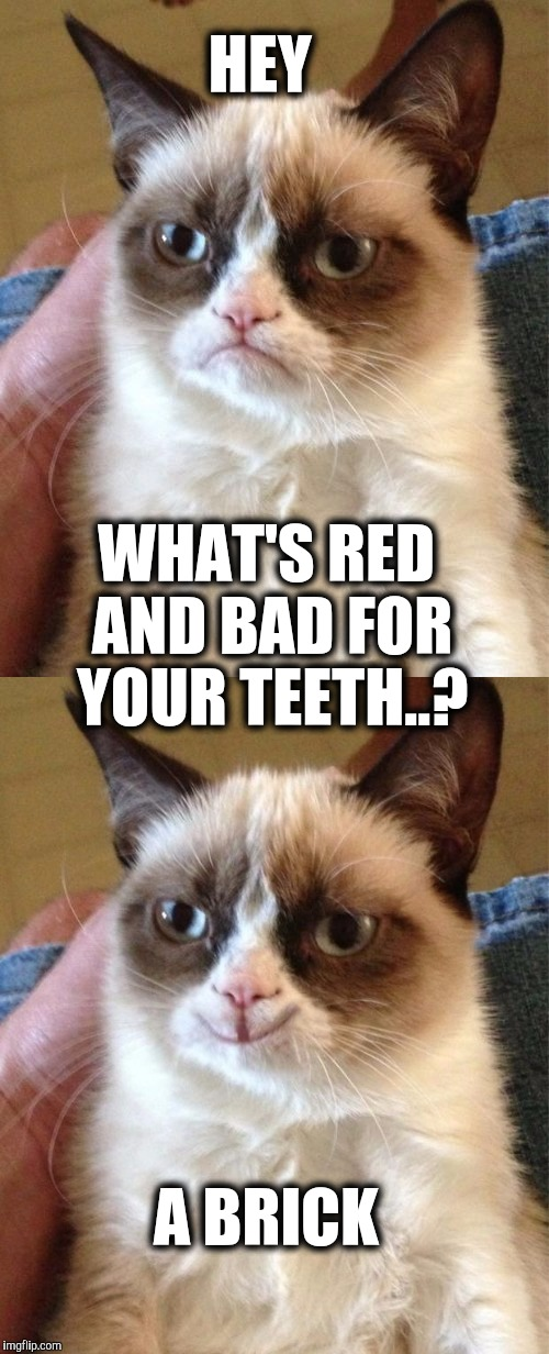 Heads up.... |  HEY; WHAT'S RED AND BAD FOR YOUR TEETH..? A BRICK | image tagged in grumpy cat,brick | made w/ Imgflip meme maker
