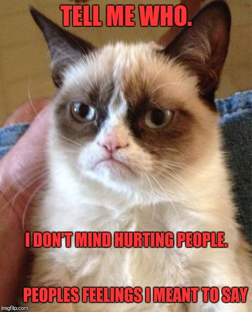 Grumpy Cat Meme | TELL ME WHO. I DON'T MIND HURTING PEOPLE.                                                                 PEOPLES FEELINGS I MEANT TO SAY | image tagged in memes,grumpy cat | made w/ Imgflip meme maker