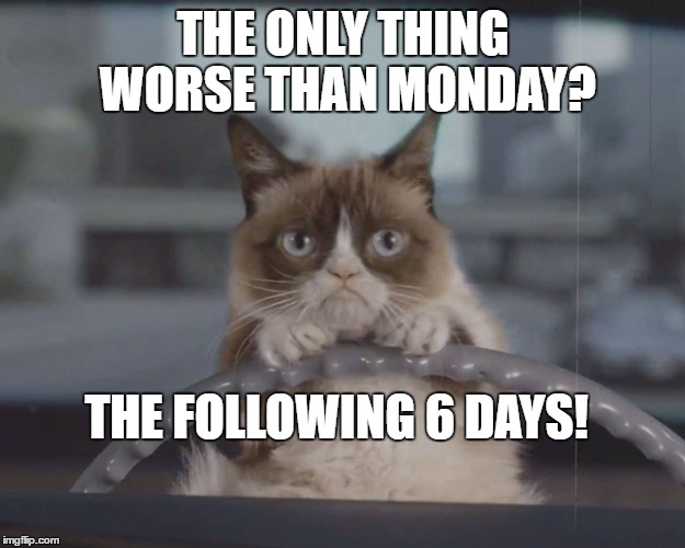 THE ONLY THING WORSE THAN MONDAY? THE FOLLOWING 6 DAYS! | made w/ Imgflip meme maker