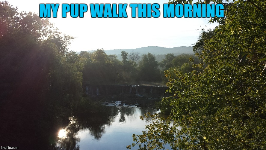 MY PUP WALK THIS MORNING | made w/ Imgflip meme maker