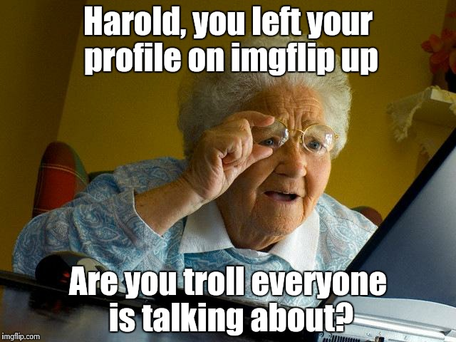 Grandma Finds The Internet Meme | Harold, you left your profile on imgflip up Are you troll everyone is talking about? | image tagged in memes,grandma finds the internet | made w/ Imgflip meme maker
