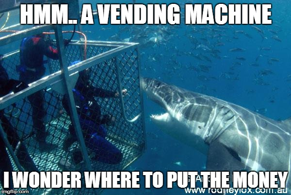 how sharks use a vending machine. well almost... | HMM.. A VENDING MACHINE I WONDER WHERE TO PUT THE MONEY | image tagged in fallout 3,creepy condescending wonka,deadpool surprised | made w/ Imgflip meme maker
