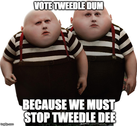 through the looking glass | VOTE TWEEDLE DUM BECAUSE WE MUST STOP TWEEDLE DEE | image tagged in jillnothill,trumpfearporn,demexit | made w/ Imgflip meme maker