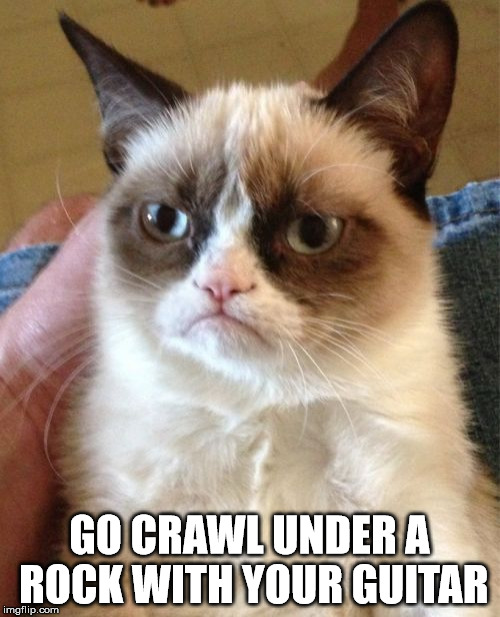 Grumpy Cat Meme | GO CRAWL UNDER A ROCK WITH YOUR GUITAR | image tagged in memes,grumpy cat | made w/ Imgflip meme maker