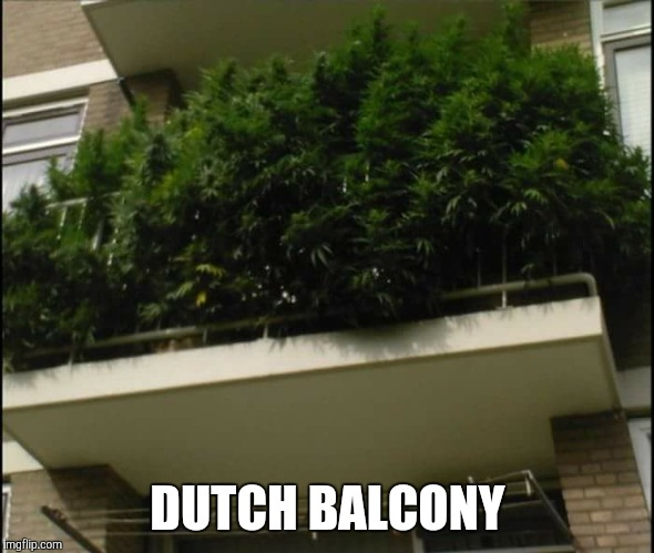 ...meanwhile somewhere in The Netherlands... | DUTCH BALCONY | image tagged in green,green party,dutch,the view | made w/ Imgflip meme maker