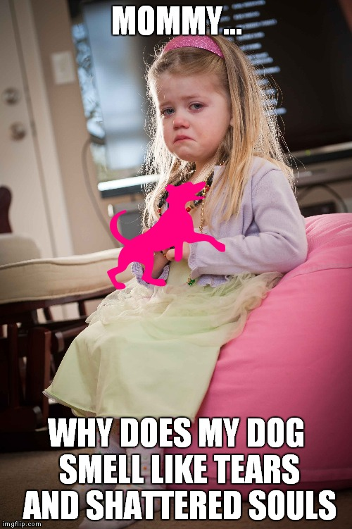 MOMMY... WHY DOES MY DOG SMELL LIKE TEARS AND SHATTERED SOULS | made w/ Imgflip meme maker