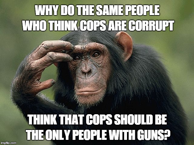 Thinking monkey | WHY DO THE SAME PEOPLE WHO THINK COPS ARE CORRUPT THINK THAT COPS SHOULD BE THE ONLY PEOPLE WITH GUNS? | image tagged in thinking monkey | made w/ Imgflip meme maker