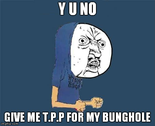 Thanks to a comment thread with Memestermemesterson :) | Y U NO GIVE ME T.P.P FOR MY BUNGHOLE | image tagged in y u no,beavis,jying,memestermemesterson | made w/ Imgflip meme maker