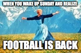 Look At All These Meme | WHEN YOU WAKE UP SUNDAY AND REALIZE FOOTBALL IS BACK | image tagged in memes,look at all these | made w/ Imgflip meme maker