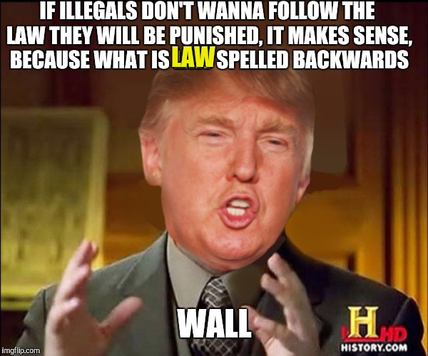 I spelled wall with 2 'L's so you'd know what I was joking about. |  IF ILLEGALS DON'T WANNA FOLLOW THE LAW THEY WILL BE PUNISHED, IT MAKES SENSE, BECAUSE WHAT IS LAW SPELLED BACKWARDS; LAW; WALL | image tagged in ancient aliens donald trump | made w/ Imgflip meme maker