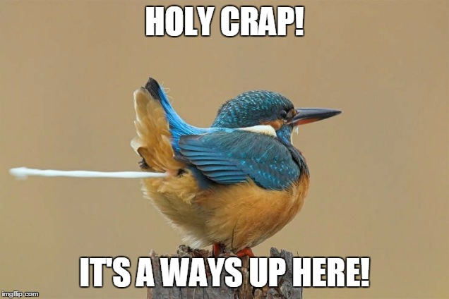 HOLY CRAP! IT'S A WAYS UP HERE! | made w/ Imgflip meme maker