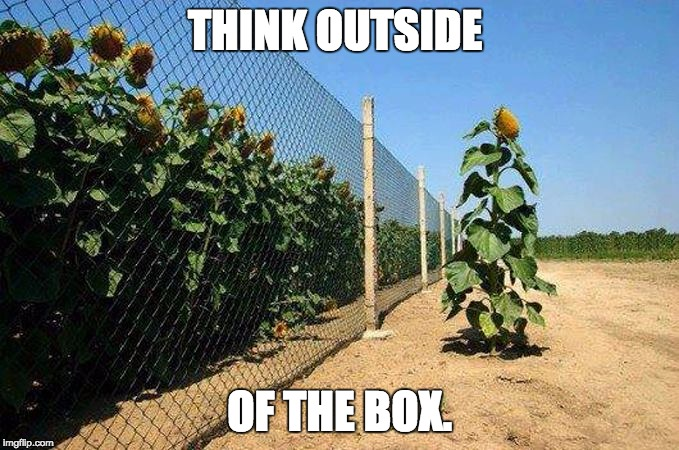 THINK OUTSIDE; OF THE BOX. | image tagged in think,do | made w/ Imgflip meme maker