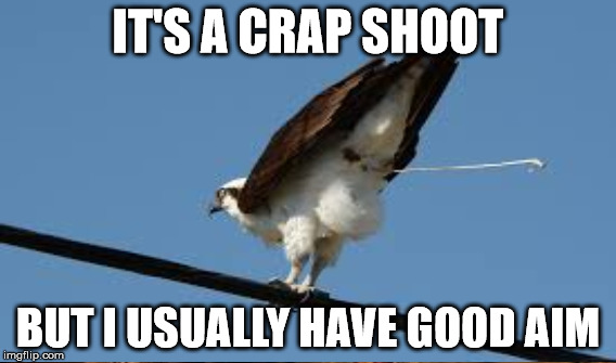 IT'S A CRAP SHOOT BUT I USUALLY HAVE GOOD AIM | made w/ Imgflip meme maker