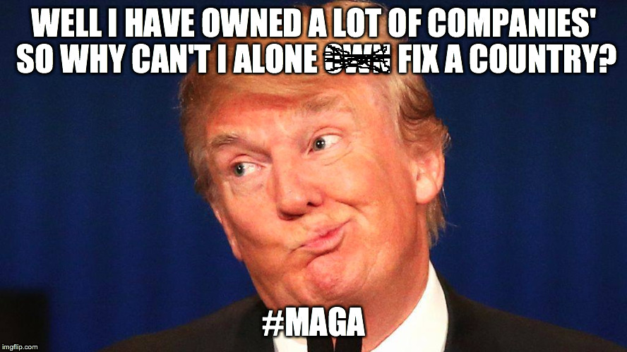 Trump's US INC | WELL I HAVE OWNED A LOT OF COMPANIES' SO WHY CAN'T I ALONE OWN FIX A COUNTRY? #MAGA | image tagged in donald trump,trump 2016,mike pence,2016 election | made w/ Imgflip meme maker