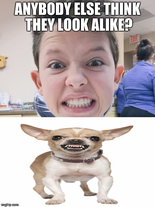 jacob sartorius | ANYBODY ELSE THINK THEY LOOK ALIKE? | image tagged in jacob sartorius | made w/ Imgflip meme maker