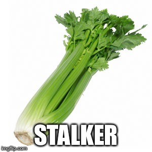STALKER | made w/ Imgflip meme maker