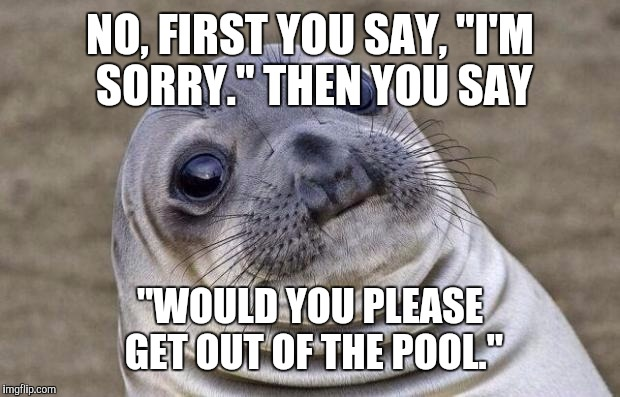 "Awkward Moment Sealion Meme | NO, FIRST YOU SAY, ""I'M SORRY."" THEN YOU SAY ""WOULD YOU PLEASE GET OUT OF THE POOL."" 
