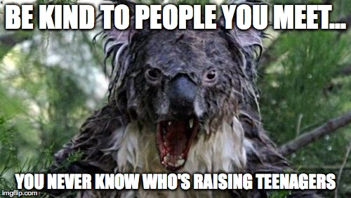 Angry Koala | BE KIND TO PEOPLE YOU MEET... YOU NEVER KNOW WHO'S RAISING TEENAGERS | image tagged in memes,angry koala | made w/ Imgflip meme maker