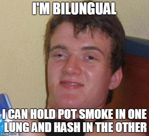 10 Guy Meme | I'M BILUNGUAL I CAN HOLD POT SMOKE IN ONE LUNG AND HASH IN THE OTHER | image tagged in memes,10 guy | made w/ Imgflip meme maker