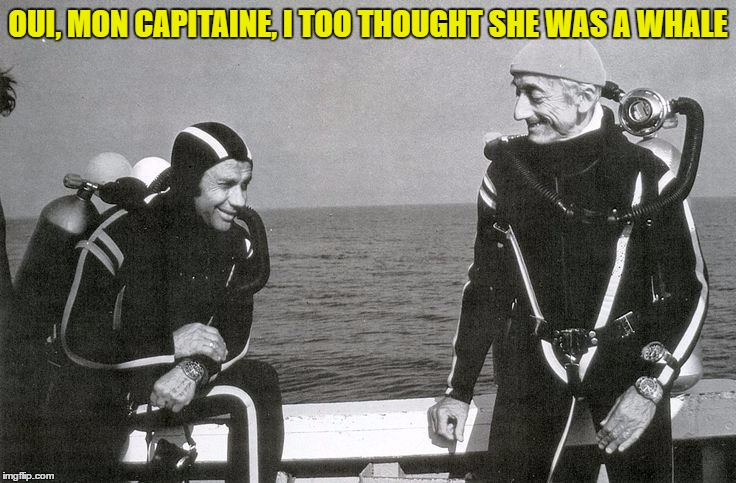 OUI, MON CAPITAINE, I TOO THOUGHT SHE WAS A WHALE | made w/ Imgflip meme maker