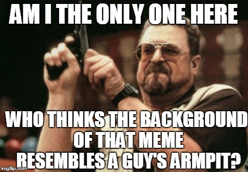Am I The Only One Around Here Meme | AM I THE ONLY ONE HERE WHO THINKS THE BACKGROUND OF THAT MEME RESEMBLES A GUY'S ARMPIT? | image tagged in memes,am i the only one around here | made w/ Imgflip meme maker