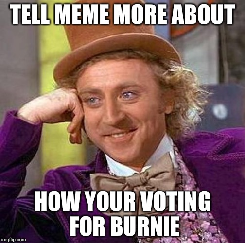 Creepy Condescending Wonka Meme | TELL MEME MORE ABOUT HOW YOUR VOTING FOR BURNIE | image tagged in memes,creepy condescending wonka | made w/ Imgflip meme maker