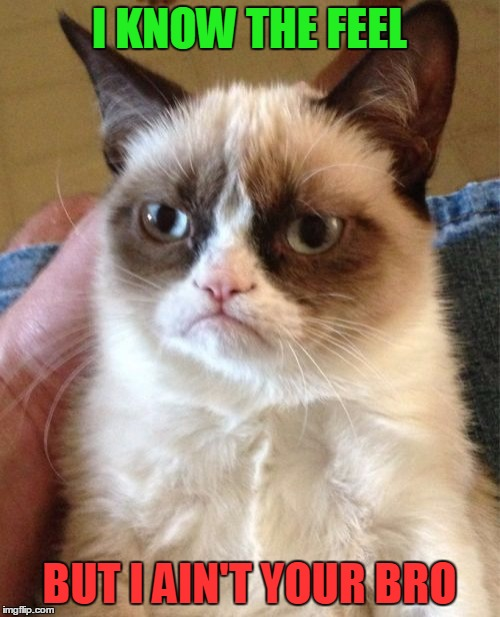 Grumpy Cat Meme | I KNOW THE FEEL BUT I AIN'T YOUR BRO | image tagged in memes,grumpy cat | made w/ Imgflip meme maker