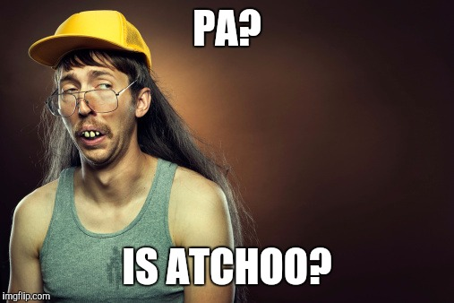 PA? IS ATCHOO? | made w/ Imgflip meme maker