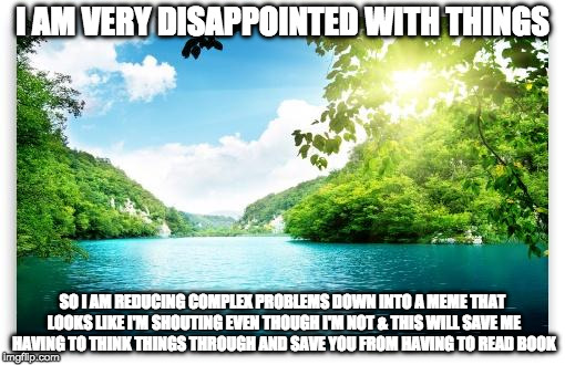 PeacefulLake | I AM VERY DISAPPOINTED WITH THINGS SO I AM REDUCING COMPLEX PROBLEMS DOWN INTO A MEME THAT LOOKS LIKE I'M SHOUTING EVEN THOUGH I'M NOT & THI | image tagged in peacefullake | made w/ Imgflip meme maker