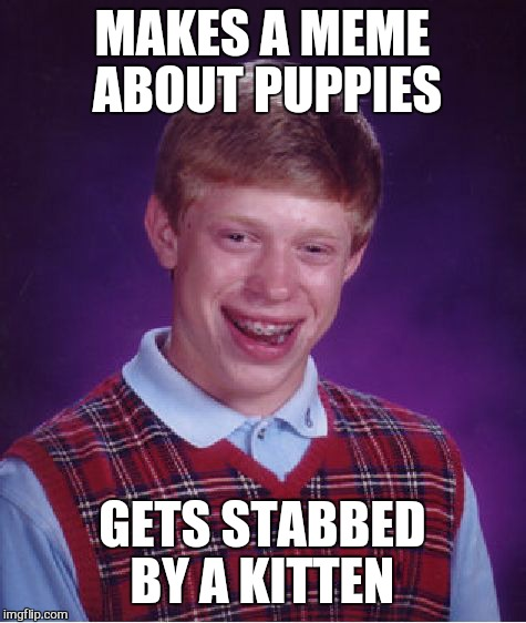 Bad Luck Brian Meme | MAKES A MEME ABOUT PUPPIES GETS STABBED BY A KITTEN | image tagged in memes,bad luck brian | made w/ Imgflip meme maker