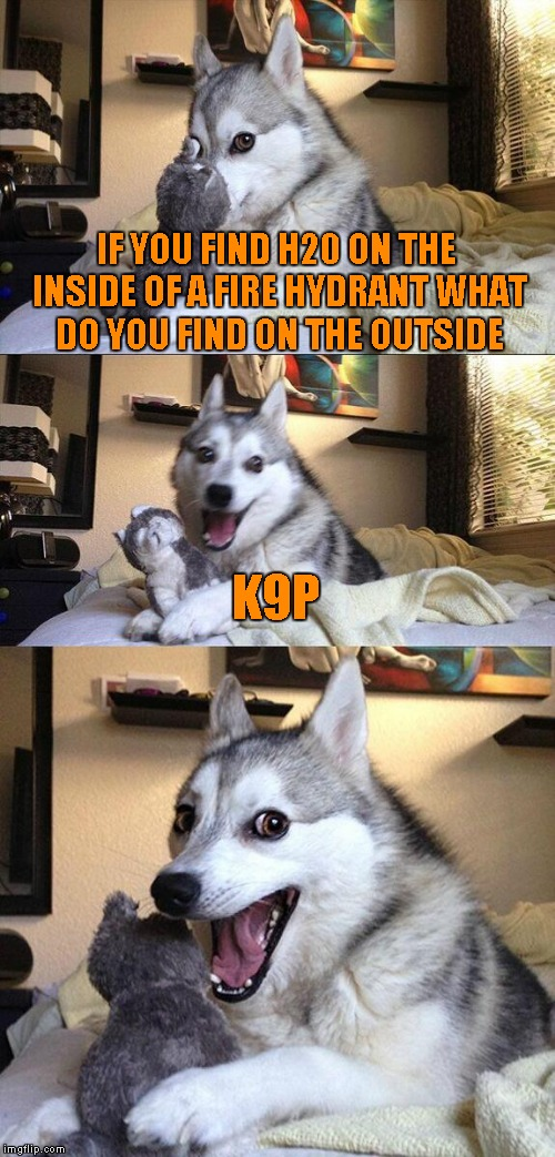 Bad Pun Dog Meme | IF YOU FIND H20 ON THE INSIDE OF A FIRE HYDRANT WHAT DO YOU FIND ON THE OUTSIDE K9P | image tagged in memes,bad pun dog | made w/ Imgflip meme maker