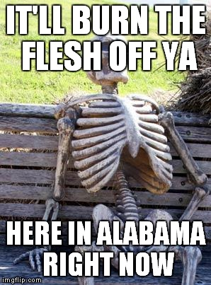 Waiting Skeleton Meme | IT'LL BURN THE FLESH OFF YA HERE IN ALABAMA RIGHT NOW | image tagged in memes,waiting skeleton | made w/ Imgflip meme maker