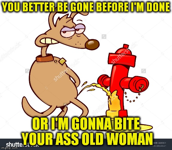 YOU BETTER BE GONE BEFORE I'M DONE OR I'M GONNA BITE YOUR ASS OLD WOMAN | made w/ Imgflip meme maker
