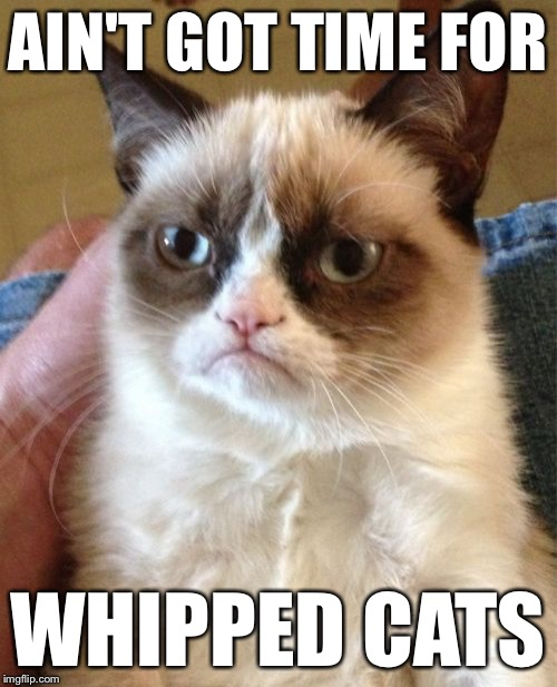 Grumpy Cat Meme | AIN'T GOT TIME FOR WHIPPED CATS | image tagged in memes,grumpy cat | made w/ Imgflip meme maker
