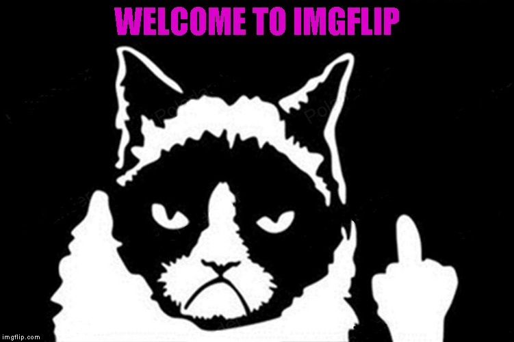 WELCOME TO IMGFLIP | made w/ Imgflip meme maker