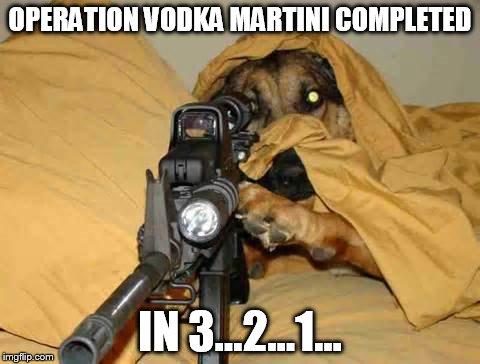 OPERATION VODKA MARTINI COMPLETED IN 3...2...1... | image tagged in sniper dog | made w/ Imgflip meme maker