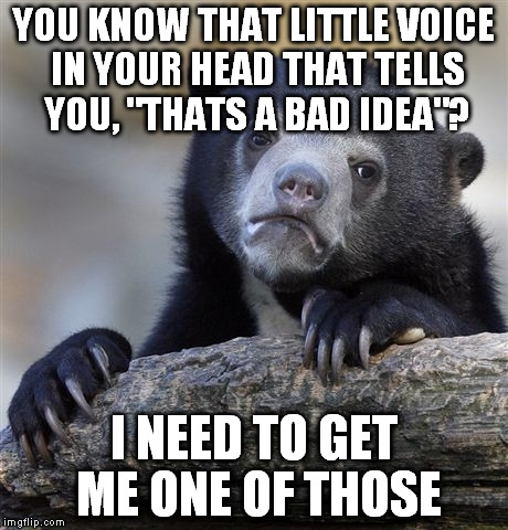 "Confession Bear Meme | YOU KNOW THAT LITTLE VOICE IN YOUR HEAD THAT TELLS YOU, ""THATS A BAD IDEA""? I NEED TO GET ME ONE OF THOSE 
