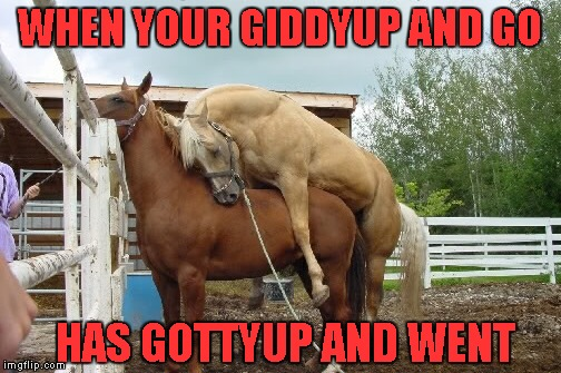 WHEN YOUR GIDDYUP AND GO HAS GOTTYUP AND WENT | made w/ Imgflip meme maker