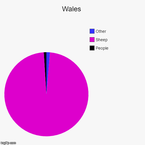 Wales | People, Sheep, Other | image tagged in pie charts,wales | made w/ Imgflip chart maker