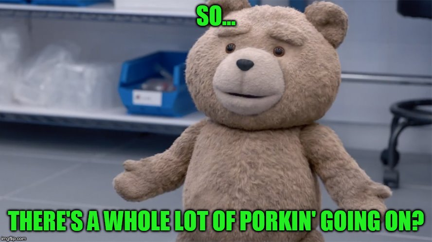 SO... THERE'S A WHOLE LOT OF PORKIN' GOING ON? | image tagged in ted question | made w/ Imgflip meme maker