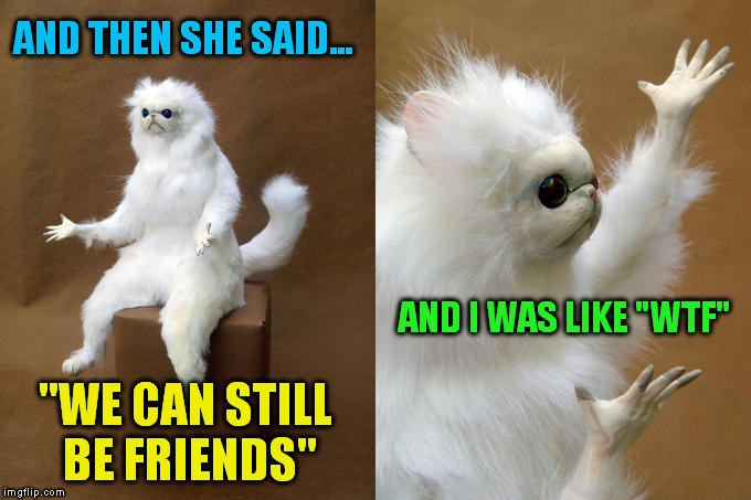 "Persian Cat Room Guardian ( A Socrates Request) |  AND THEN SHE SAID... AND I WAS LIKE ""WTF""; ""WE CAN STILL BE FRIENDS"" 