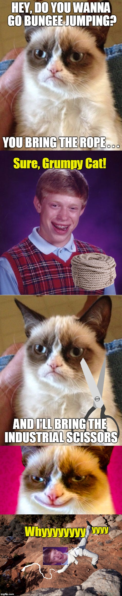 If Grumpy Cat Asks if You Want to Go Bungee Jumping - Say No | HEY, DO YOU WANNA GO BUNGEE JUMPING? Whyyyyyyyy YOU BRING THE ROPE . . . Sure, Grumpy Cat! AND I'LL BRING THE INDUSTRIAL SCISSORS yyyy | image tagged in memes,funny,grumpy cat,bad luck brian,bungee,meme | made w/ Imgflip meme maker