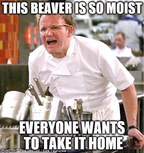 18nf4f chef gordon ramsay meme imgflip